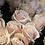 Thumbnail: Sweet Avalanche Roses