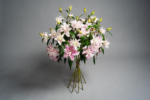 Rosa Lilies