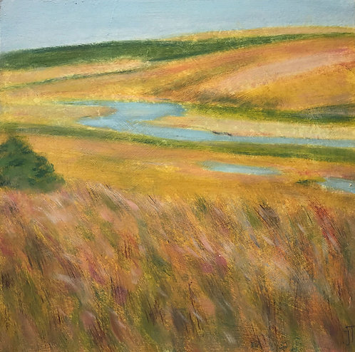 Cuckmere Meander by Janice Thurston