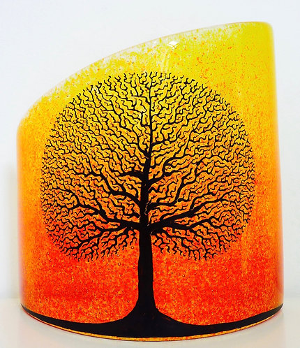 Tree of Life in Sunset Mist