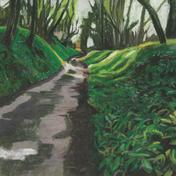 Shadow Path Wild Garlic