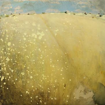 Sun-baked Fields