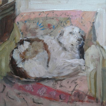 Dog with Indian Throw