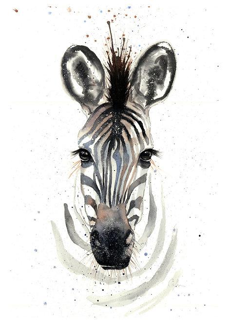 Stripes by Nicola Colbran