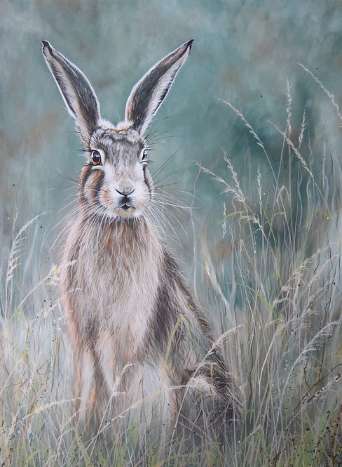 Hare at Dawn by Nicola Colbran