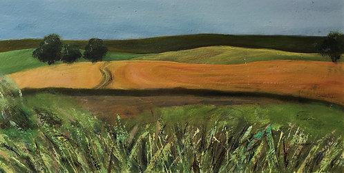 Summer Hills by Janice Thurston