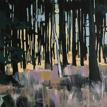 Winter Woods Ashdown 1