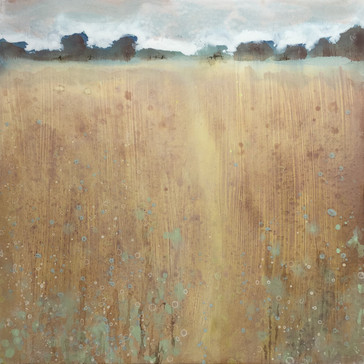 Way through the meadow
