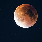 Hold Fesztivál