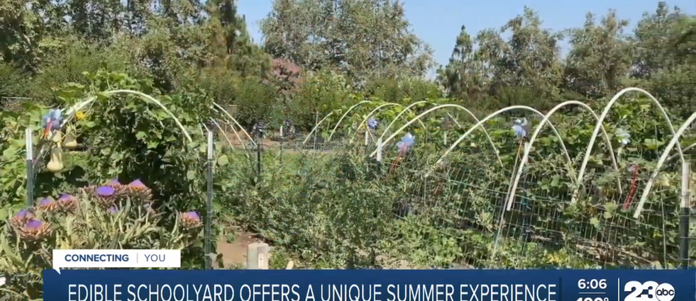 Edible Schoolyard Kern County offers a unique summer camp opportunity