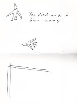 'I didn't fly away'