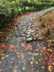 """Roji"" Path to the Tea House"