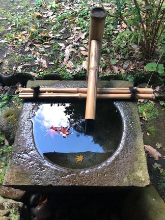 Water Basin at the Tea House