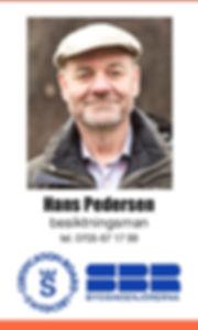 besiktningsman, Hans pedersen, nyköping