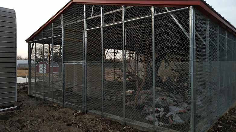 Chain Link Animal Enclosure