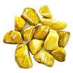 jasper- yellow.jpg