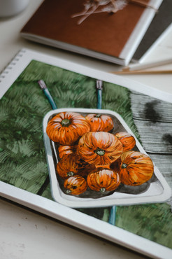 Drawing : The Pumpkins