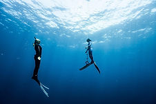 Freediving+31+08+-36+(1).jpeg