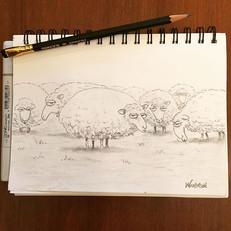 I have drawn sheep...judgemental sheep #