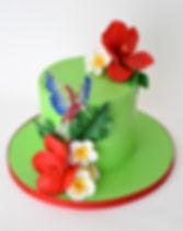 parot_cake.jpg