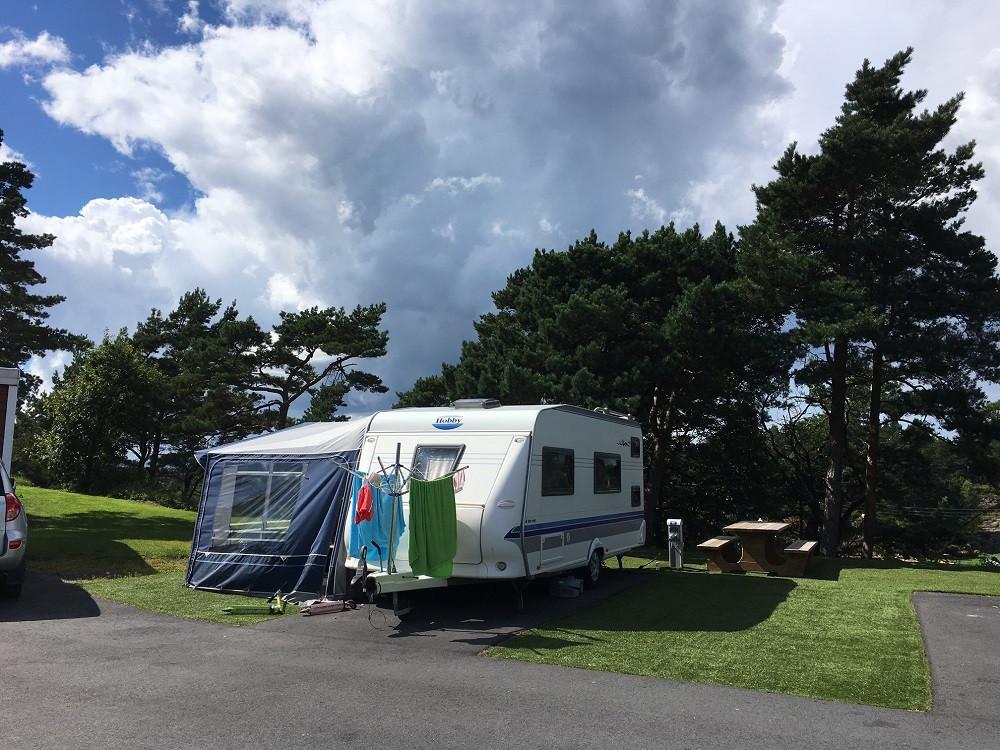 Camping-B-felt02.jpg