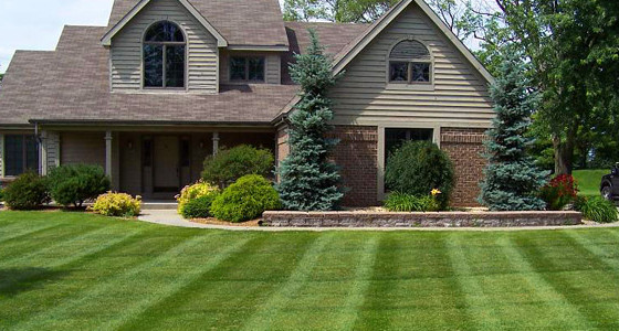 Lawn Maintenance with no hidden fees