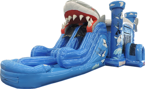 5N1 Shark Combo DL Front Right DSCN8344