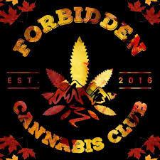 forbidden cannabis logo.jpg