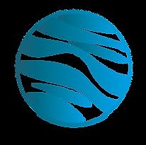 Logo_Saving_Water_FC.png