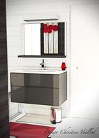 Salle de bain gris et rouge