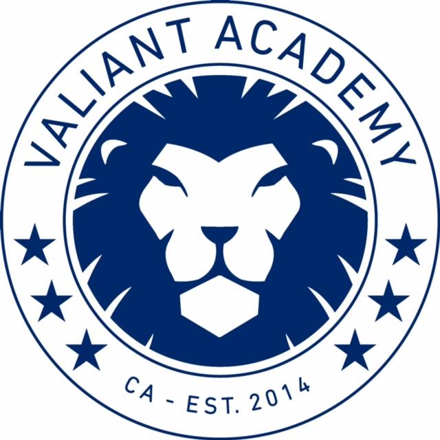valiant_logo_white_bkgrd.jpg