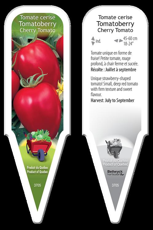 tomate cerise Tomatoberry
