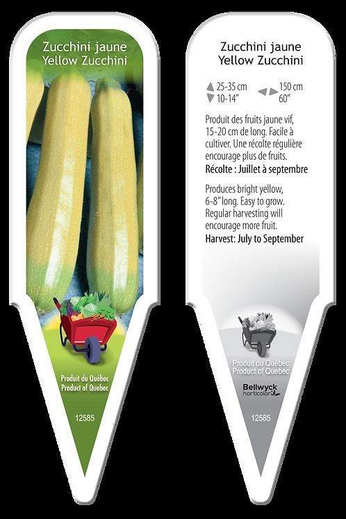 zucchini jaune