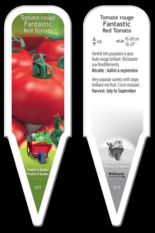 tomate Fantastic