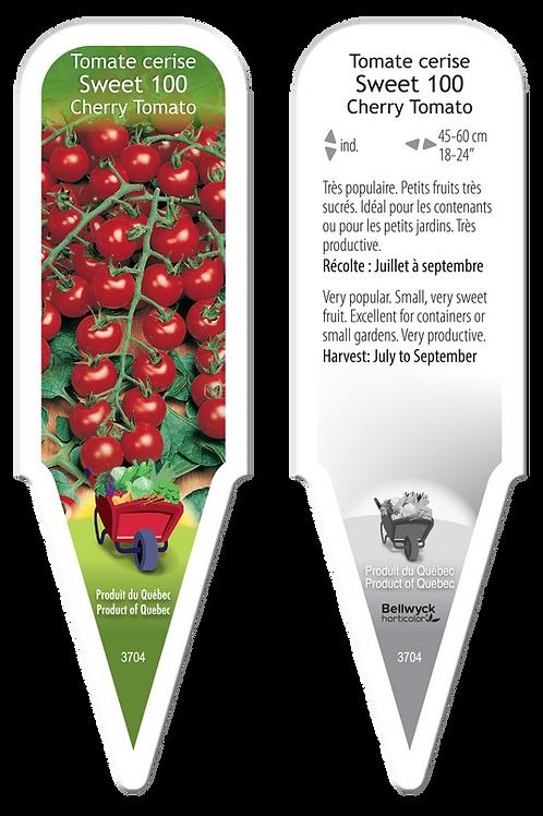 tomate cerise Sweet 100