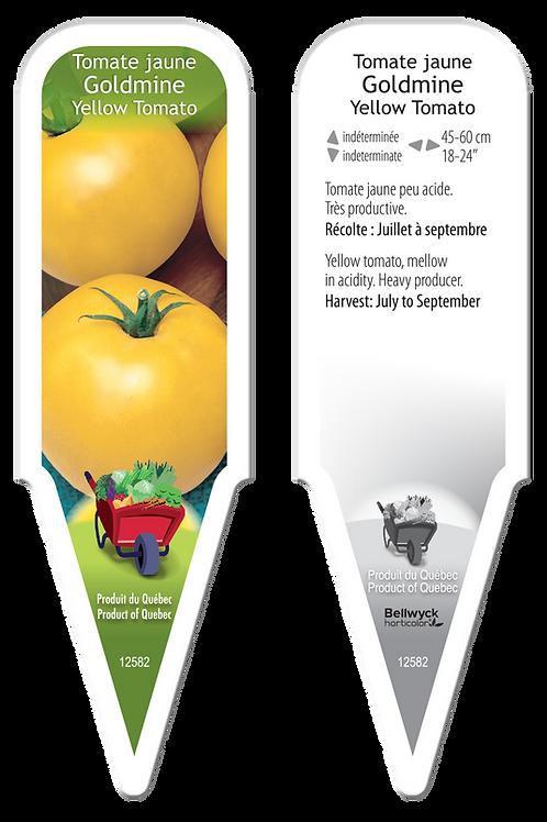 tomate jaune Goldmine
