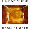 cd_room_of_gold_big.jpg