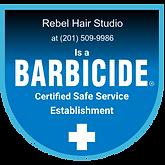 Rebel Barbicide badge.png