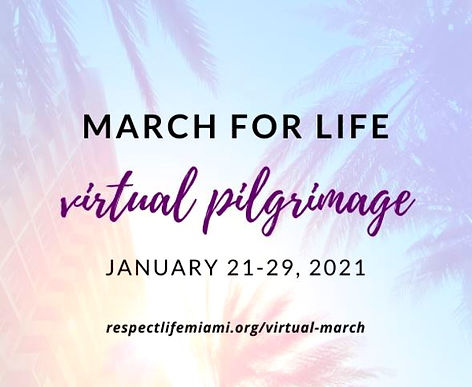 march%20for%20life%20virtual%20pilgrimag