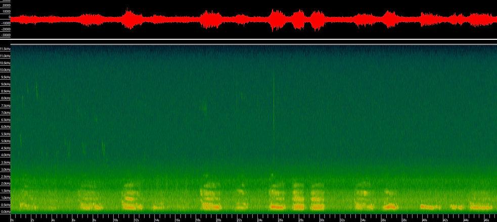 Sonogram Red Deer Roar.jpg