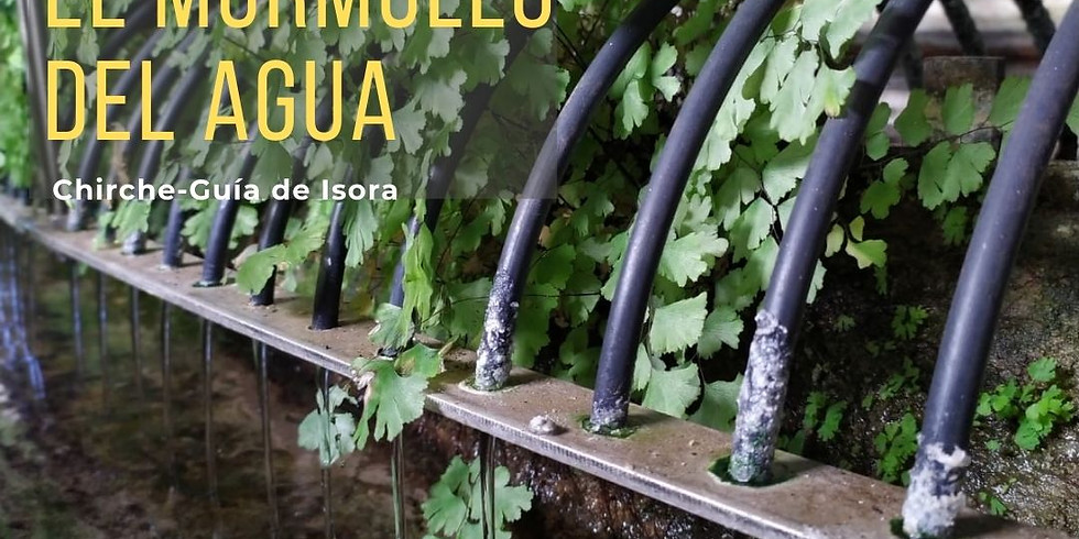 Proyecto de promoción del Patrimonio de Guía de Isora: Ruta El Murmullo del Agua