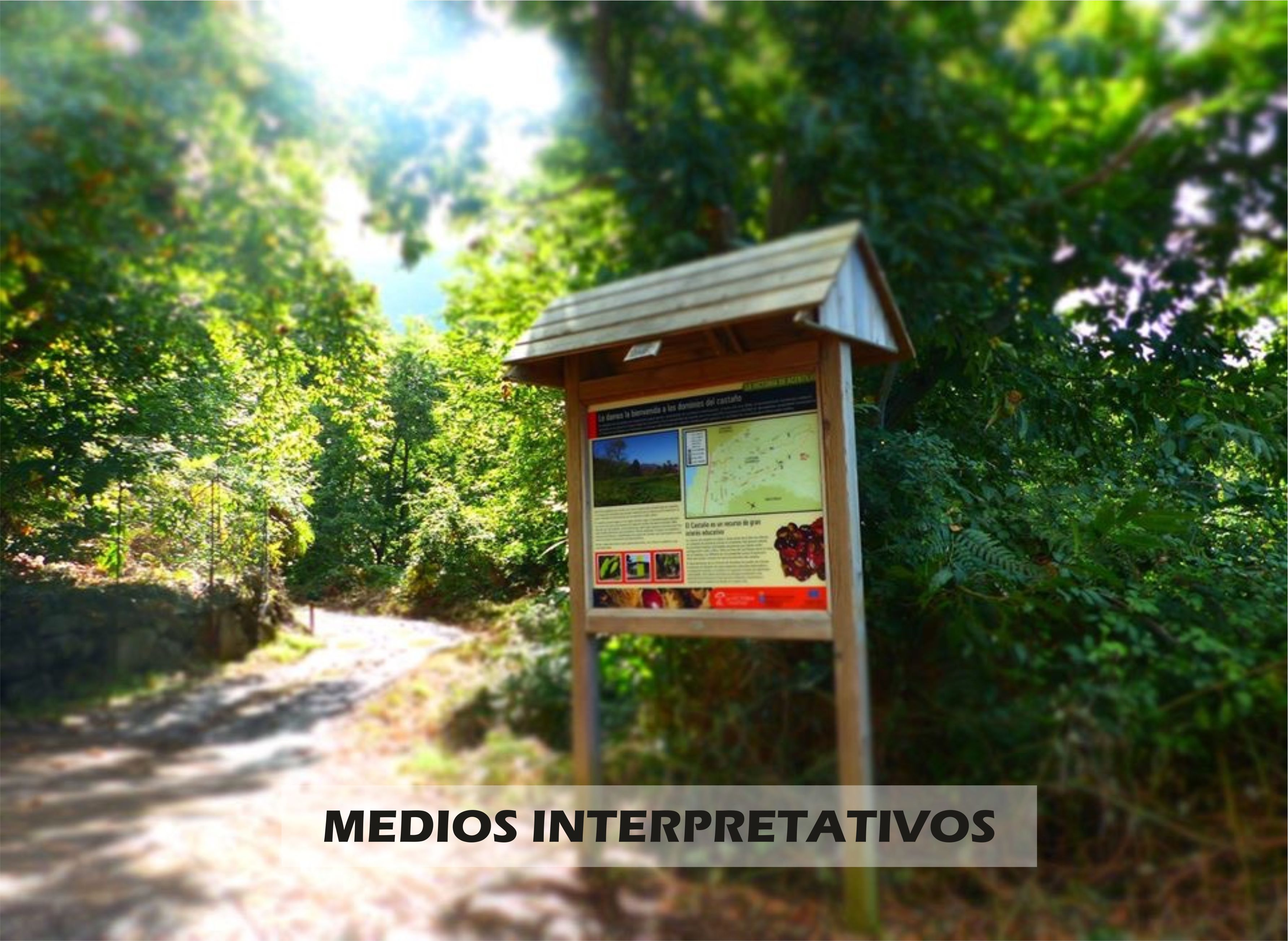 MEDIOS INTERPRETATIVOS.jpg