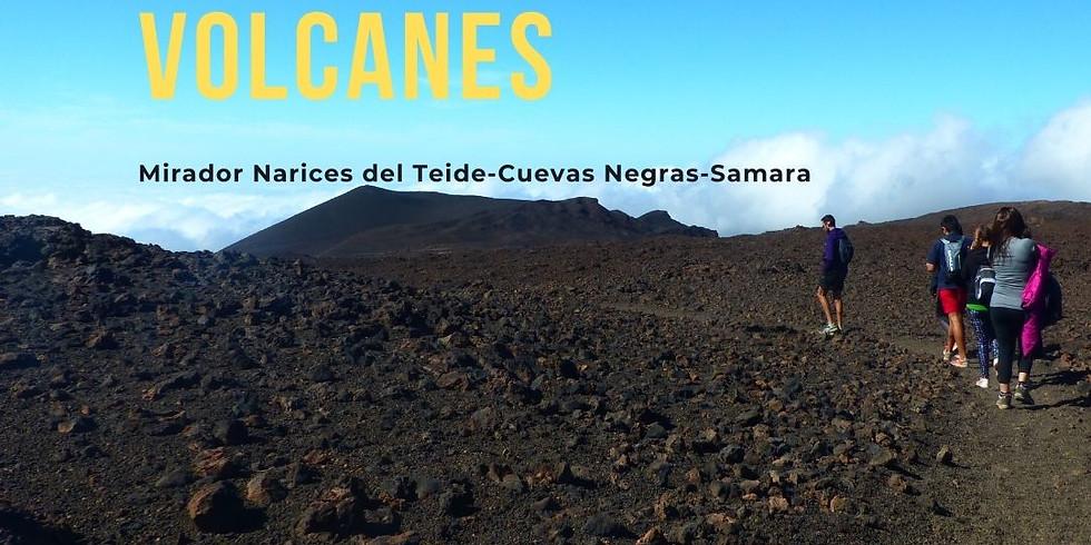 Proyecto de promoción del Patrimonio de Guía de Isora : Ruta Cuevas Negras - Samara