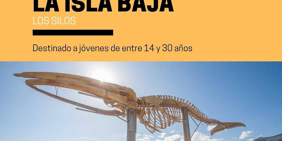 Visita a La Isla Baja - Punto Joven