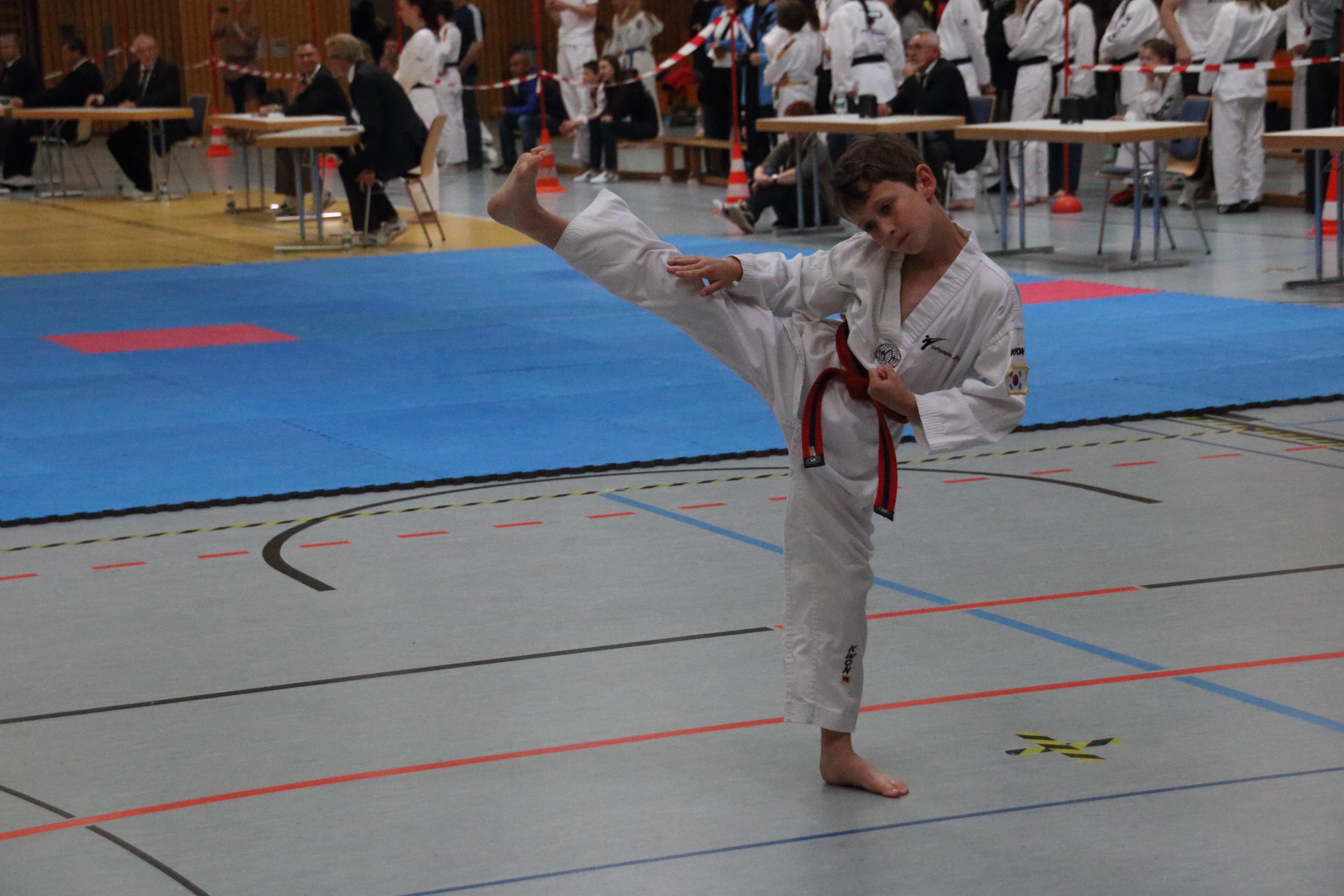 Badische Poomsae Meisterschaft 2015