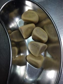 הוצאת אבנים משלפוחית של כלבה-ב
