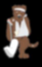 Dog Dr Shenkler logo
