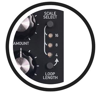 Random Circlefade Scales.png