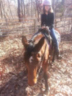 therapeutic horseback riding new jersey