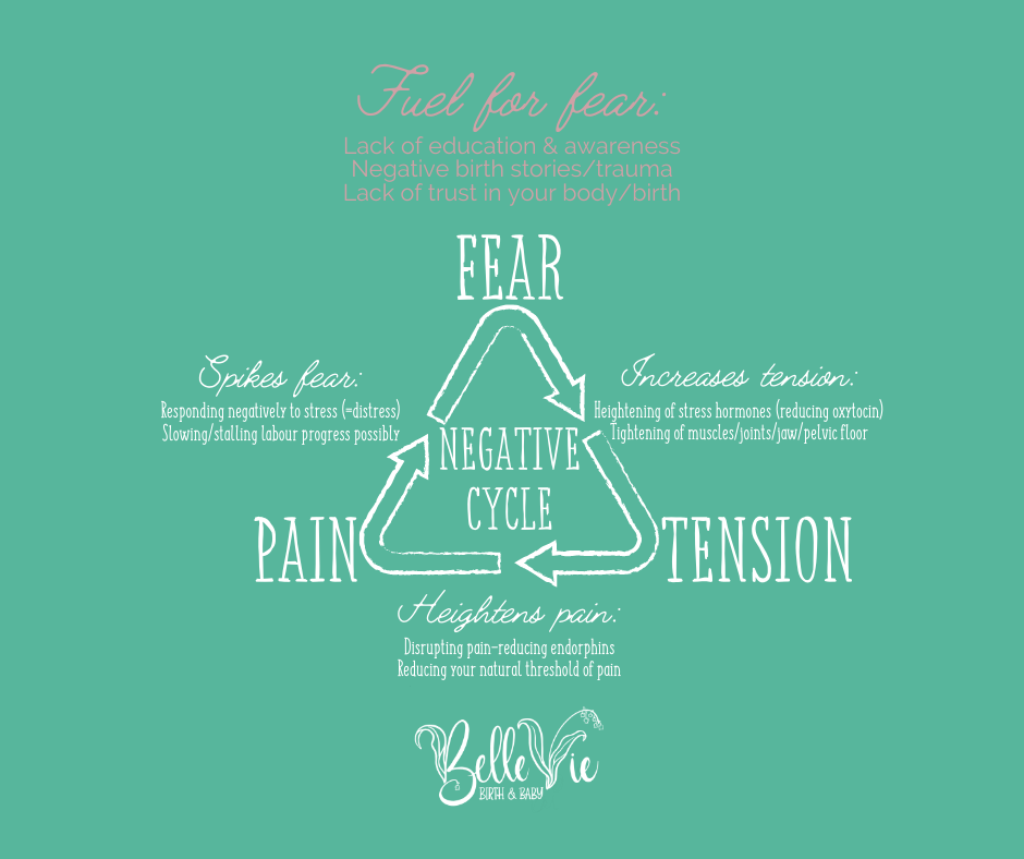 Fuel for fear is lack of education and understanding about birth, negative birth stories and trauma, lack of trust in your body and birth. Fear increases tension, tension heighens pain, and pain spikes fear creating a negative cycle.
